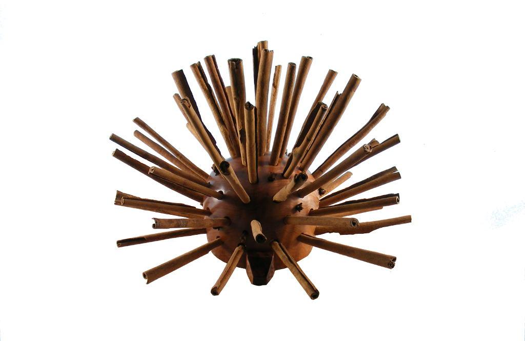 Spice-Pod-Cinnamon-and-Gloves-Havdalah-Spice-Box-BES-SP-O-O-WC-2009_0722tryfirst0015.jpg